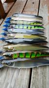 DK Musky Lures Fifty Finders