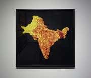 Sarindar Dhaliwal work