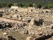 Looking over Epidavros