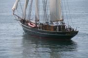 SV No.6 Texel