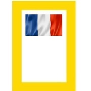French NGSM Issues