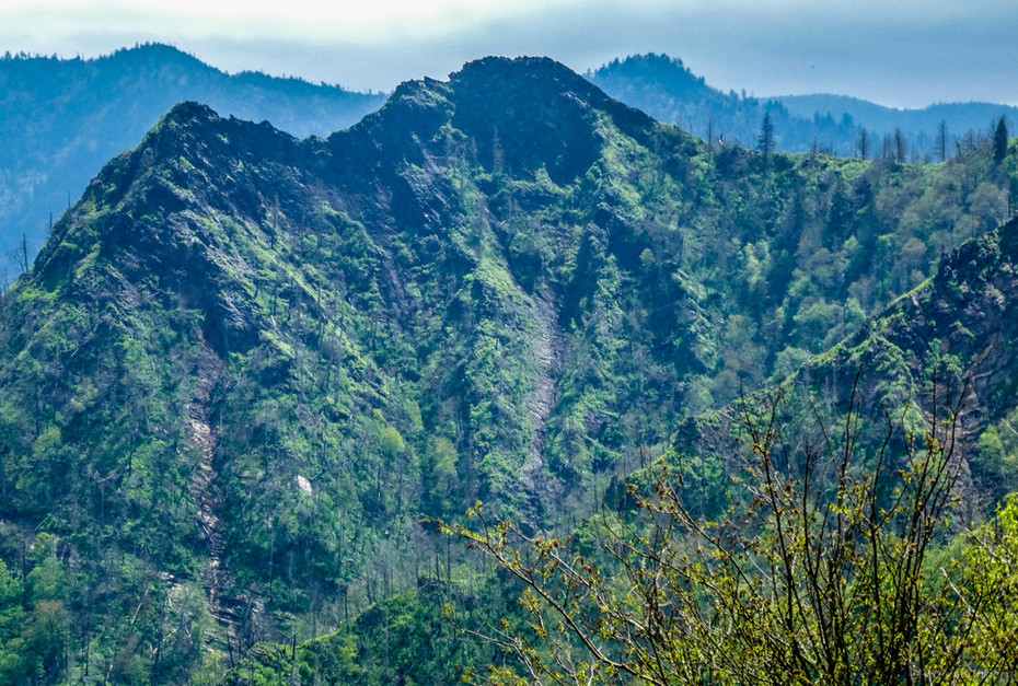 Chimney Tops from Sugarland Mountain Trail, 5-9-19