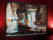 Great Ringo Indian photo