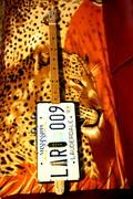 resonator license plate Viking Spirit ,Skull-Thor