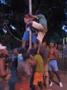 Festa Tradicional do Pau de Sebo na Cidade de Nª Sra. das Dores-Se.