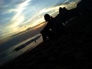 Olhando o horizonte