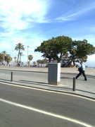a beira-mar em Barceloneta