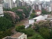 100_0085 PAINEIRAS