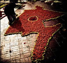 Observe international mother language day(National memorial )