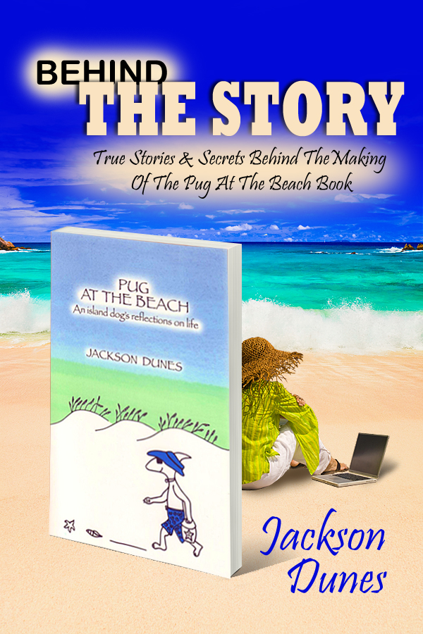 Behind The Story By Jackson Dunes