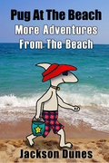 More Adventures From The Beach By Jackson Dunes