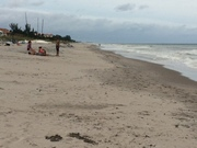 North end of the municipal beach in Delray after Hurricane Matthew