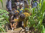 May 2014: Farmers provide training on nursery preparation