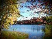 Half Moon Lake Fall 2013