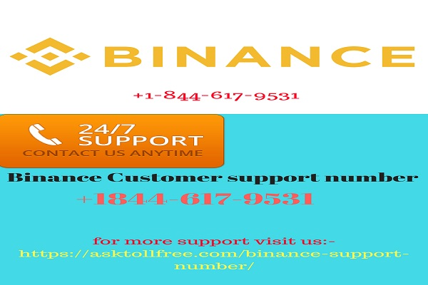 Binnace Customer support number