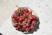 Cunchy red grapes