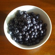 monomeal of blueberries