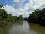 Tropical river system