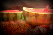 Watermelon partyy