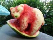Oso You Want This Melon?