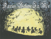 Fairies Believe Night