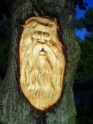 Jackson's Point ON - Wood Spirit Tree