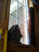 WoodSpirit at the Window