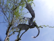 Al'akir - frost dragon