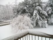 Snow storm feb 2010