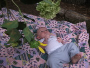 Infants & Toddlers in Nature