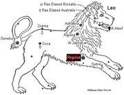 1regulus-LION