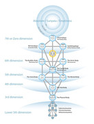 The Tree of Life Model of The Source Eminating Consciousness Throughout ALL levels of The Infinite Manifest of The Omniverse