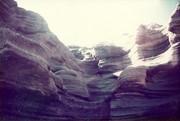 Desert Wind - Red Rocks Colorado - By Roxanne Skidmore