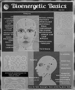 BIOENERGETICS CHART 2