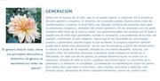 7 Leyes Universales Generacion