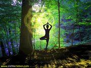 Yogi am Baum