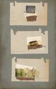 Specimen Boards