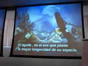 SALON DE EVENTOS DE CEDAE (UNIVERSIDAD REGIOMONTANA) 001