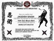 10th Dan SHINKA RYU NINJUTSU