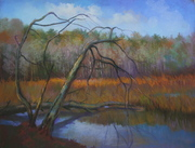 "Kiefaber A_ Marsh Trees""_13 x 20."