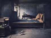 Black mould house (2016)
