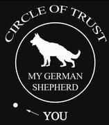 My German Shepherds