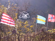 Zászlóink