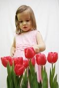 Eszter es a tulipanok