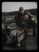 Caribou 25 Pointer