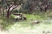 Tree Watercolor - Acuarela del Navazo