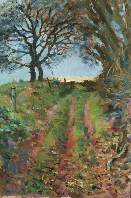 December Track (Tintern to Saltmills)
