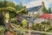 Lulu's Garden. Knockrose. Summer 2014