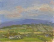 Fields, evening sky