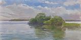 Clumps in the Lake At Virgina